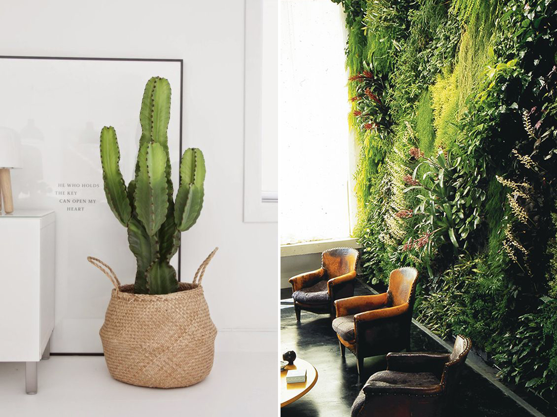 טרנדים בעיצוב ל 2019, טרנדים בעיצוב פנים, design trends 2019, cactus, green wall